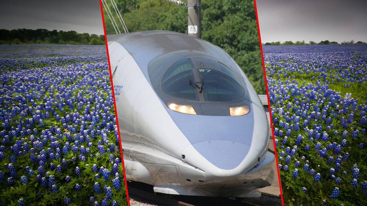https://thetexan.news/wp-content/uploads/2021/02/High-Speed-Rail-Texas-Blue-Bonnets-1280x720.jpg
