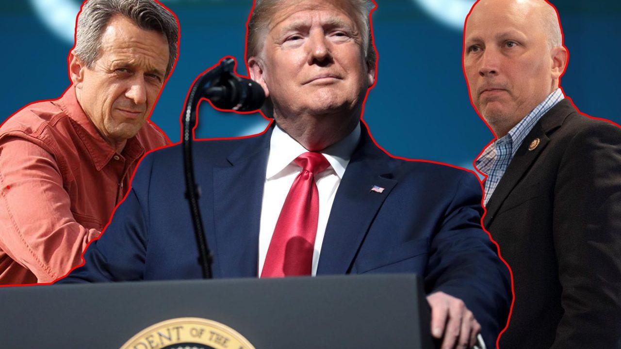 https://thetexan.news/wp-content/uploads/2021/06/Matt-McCall-Chip-Roy-Donald-Trump-TX21-Congressional-Race-1280x720.jpg